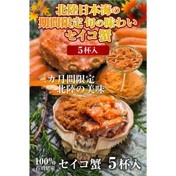 カニ かに 蟹 セイコガニ せいこ蟹  せいこがに 石川県産 セコカニ せこ蟹 6〜8杯入り|y-kanazawamaimon|02