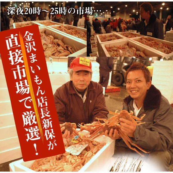 カニ かに 蟹 セイコガニ せいこ蟹  せいこがに 石川県産 セコカニ せこ蟹 6〜8杯入り|y-kanazawamaimon|05