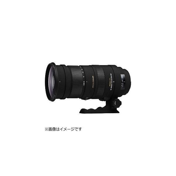シグマ APO 50−500mm F4.5−6.3 DG OS (キヤノン) APO505004.56.3DGOS