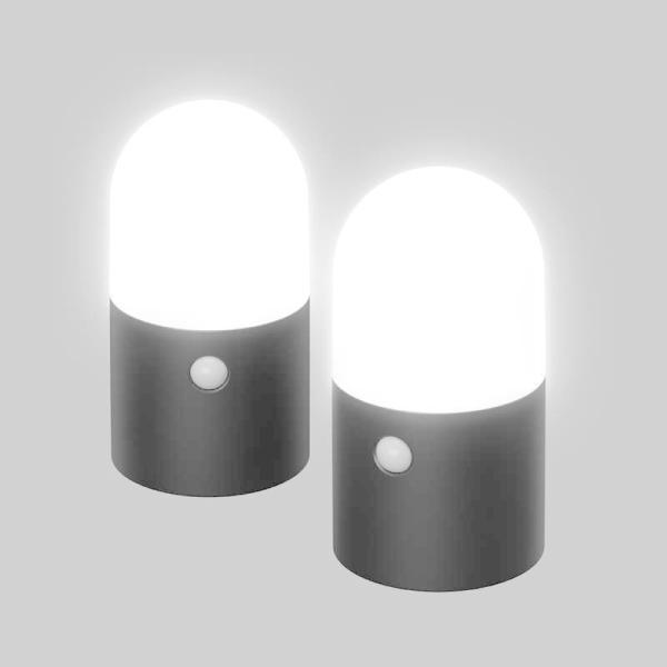 アイリスオーヤマ IRIS OHYAMA 乾電池式LEDガーデンセンサーライト 丸型 2個セット ZSLMN1MBKS2