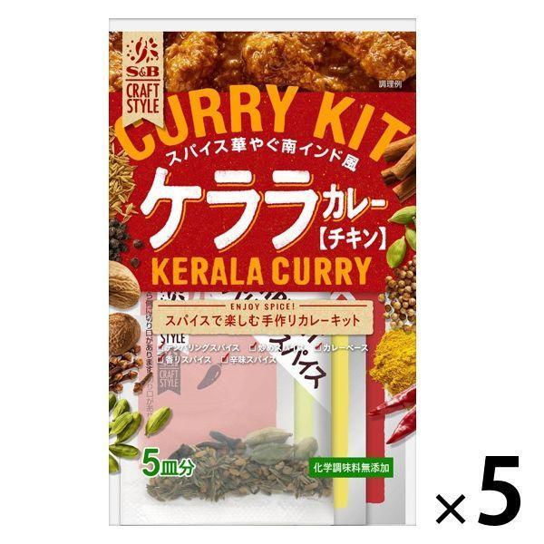 手作りカレーキット ケララカレー 化学調味料無添加 クラフトスタイル 1セット(5個) エスビー食品