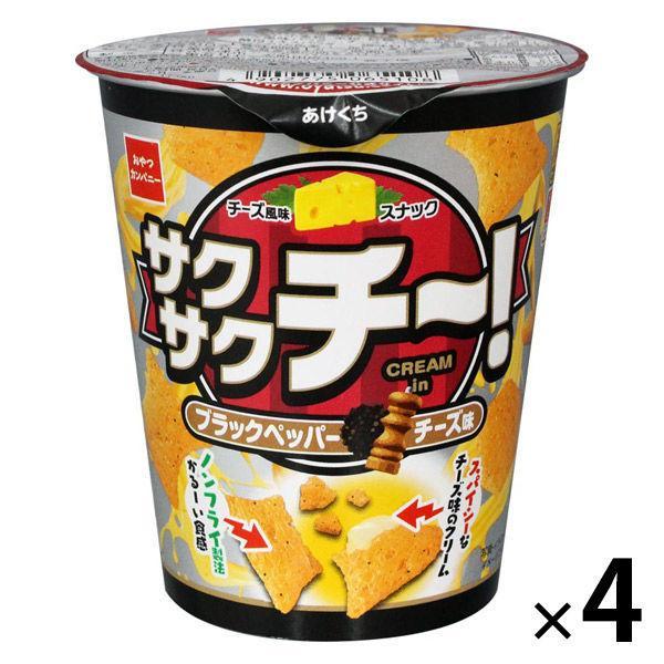 【アウトレット】おやつカンパニー サクサクチーブラックペッパーチーズ味40g 1セット(4個)