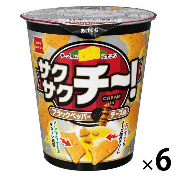 【アウトレット】おやつカンパニー サクサクチーブラックペッパーチーズ味40g 1セット(6個)