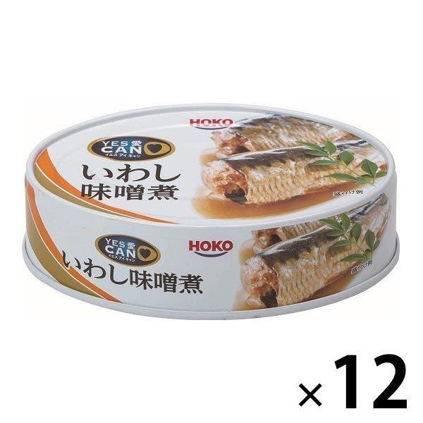 【アウトレット】宝幸 いわし味噌煮 100g 1セット(12缶)