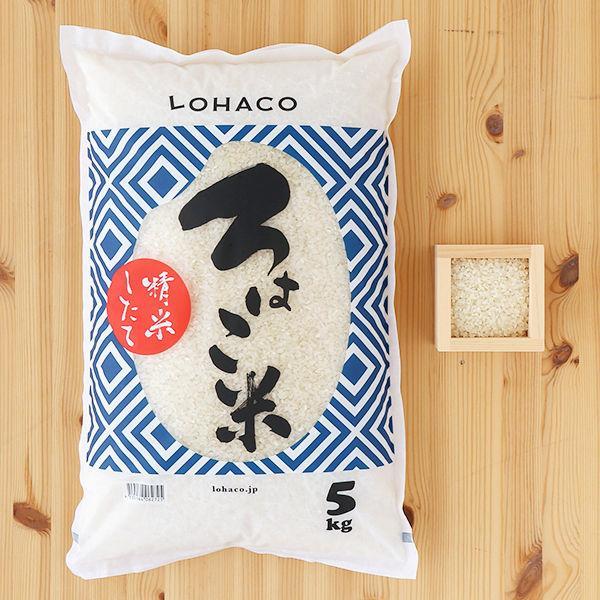 秋田県産 あきたこまち 5kg  精白米  精米したて「ろはこ米」  令和2年産  発送日当日精米 米 お米