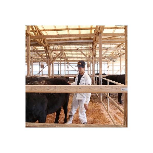 江北町 ふるさと納税 【農家直営】佐賀牛サーロイン4枚(200g×4枚)|y-sf|02