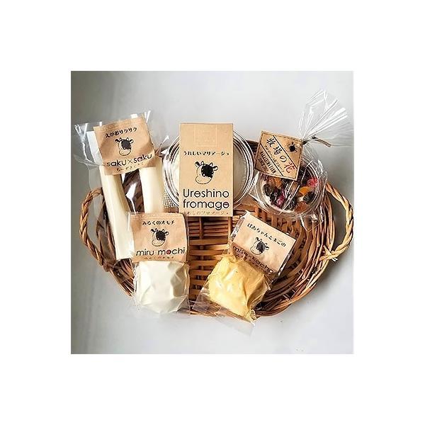 嬉野市 ふるさと納税 【酪農家の手作り】出来立てうれしのチーズ5種セット|y-sf