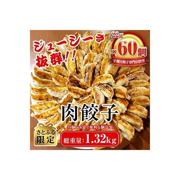 宇都宮市ふるさと納税宇都宮餃子専門店悟空22g肉餃子60個入 さとふる