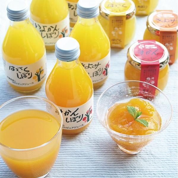 伊藤農園 100%ピュアジュース&ジュレセット V-113 || ドリンク ジュース フルーツジュース 詰め合わせ|y-shaddy|02