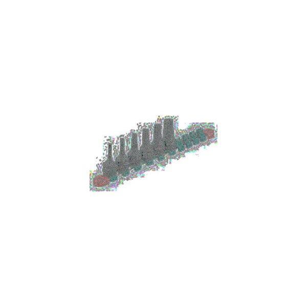 京都機械工具 AVSA-108B KTC 大径用カップ型オイルフィルタレンチ108B