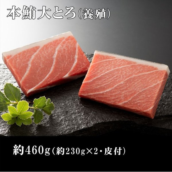 【養殖】 本鮪大とろ約460g (約230g×2サク)マグロ まぐろ 大トロ 刺身 寿司 丼 脂 御祝 内祝 誕生日 贈り物(hya110g)
