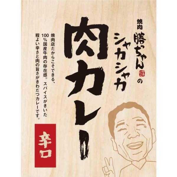 [送料無料]焼肉勝っちゃんの国産肉ぎょーさんシャカシャカ肉カレー【辛口】お得な10個まとめ買いセット|yakiniku-kacchan