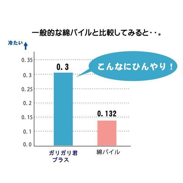 冷感 抱き枕 クッション 洗える 『ガリガリ君 プラス』 20R×110cmお買得品|yakudachitai-shop|04