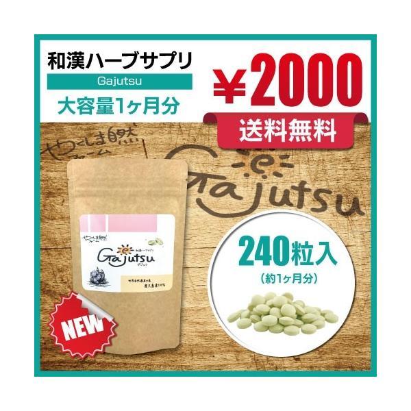 https://item-shopping.c.yimg.jp/i/l/yakushima-shizen_tubu-gajutsu