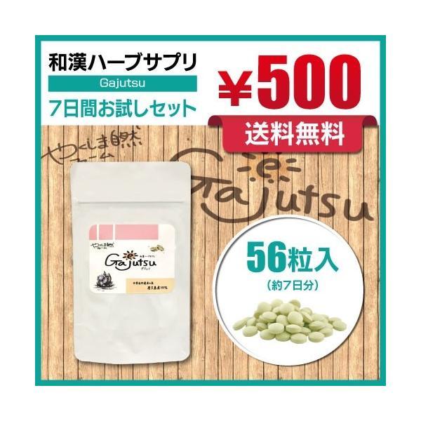 ガジュツ 紫ウコン 屋久島産100% Gajutsu お試し7日分|yakushima-shizen