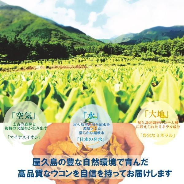屋久島春ウコン300粒 4個セット 直販|yakushima-ukon|02