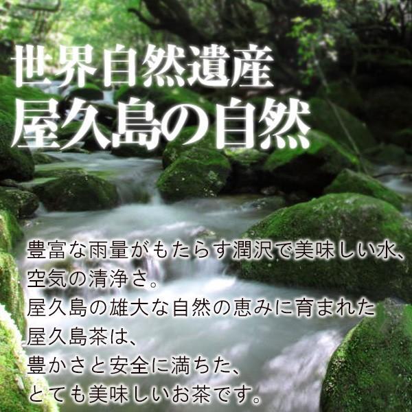 屋久島茶(80g)  無農薬 有機栽培 産地直送 JAS認定|yakushimashop|06