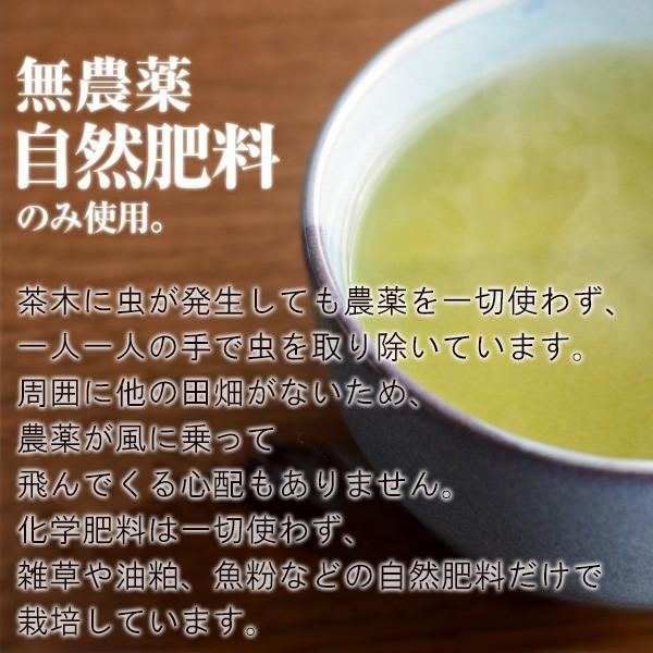 屋久島茶(80g)  無農薬 有機栽培 産地直送 JAS認定|yakushimashop|07
