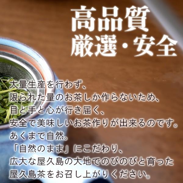屋久島茶(80g)  無農薬 有機栽培 産地直送 JAS認定|yakushimashop|08