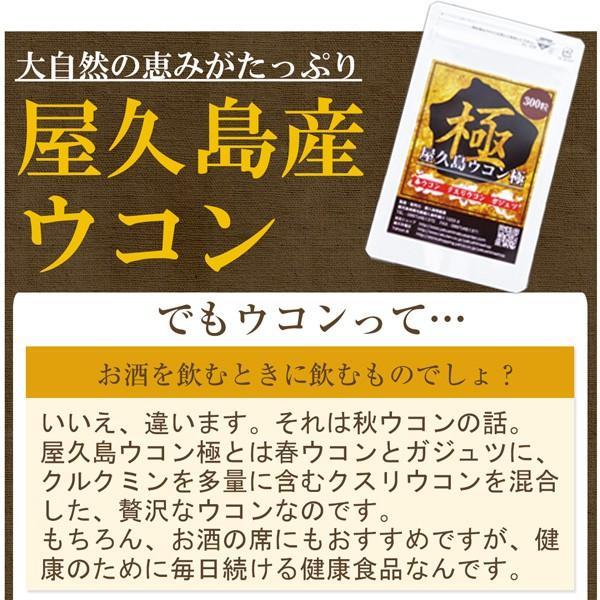 屋久島ウコン極(300粒) / 無農薬 / 有機栽培 / 産地直送|yakushimashop|13