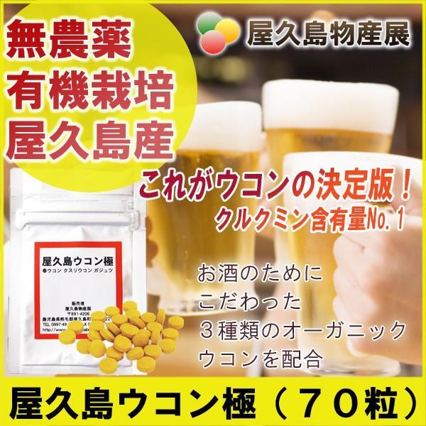 屋久島ウコン極(70粒)【お試し】|yakushimashop
