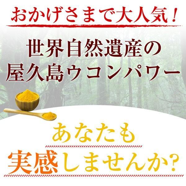 屋久島春ウコン粒(300粒) / 無農薬 / 有機栽培 / 産地直送|yakushimashop|12