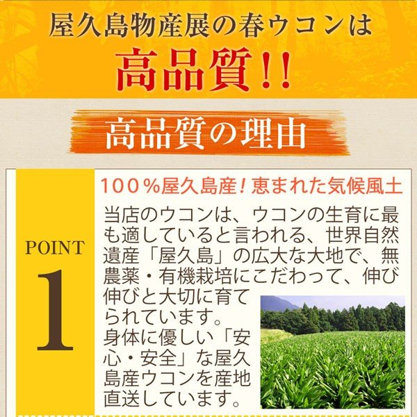 屋久島春ウコン粒(300粒) / 無農薬 / 有機栽培 / 産地直送|yakushimashop|15