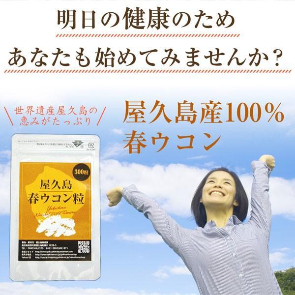 屋久島春ウコン粒(300粒) / 無農薬 / 有機栽培 / 産地直送|yakushimashop|19