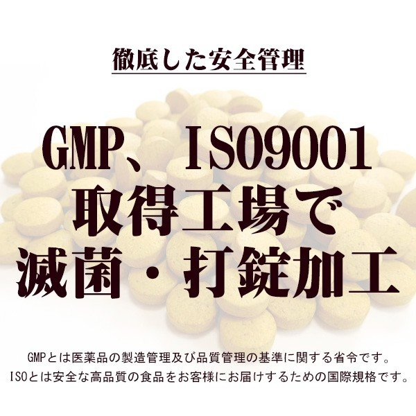 屋久島春ウコン粒(300粒) / 無農薬 / 有機栽培 / 産地直送|yakushimashop|03