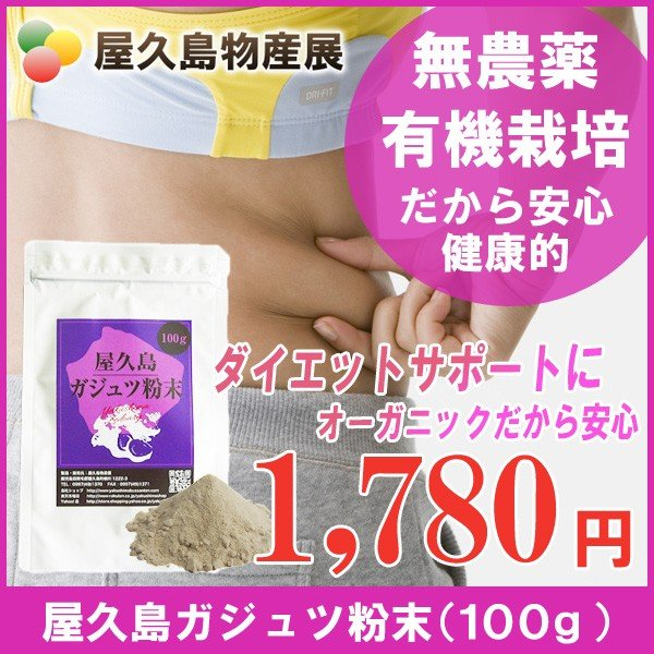 屋久島紫ウコン(ガジュツ)粉末(100g) / 無農薬 / 有機栽培 / 産地直送 yakushimashop