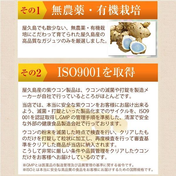 屋久島紫ウコン(ガジュツ)粉末(100g) / 無農薬 / 有機栽培 / 産地直送 yakushimashop 11