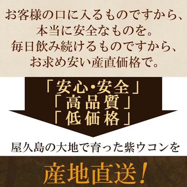 屋久島紫ウコン(ガジュツ)粉末(100g) / 無農薬 / 有機栽培 / 産地直送 yakushimashop 12
