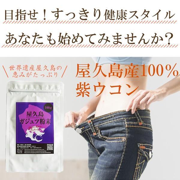 屋久島紫ウコン(ガジュツ)粉末(100g) / 無農薬 / 有機栽培 / 産地直送 yakushimashop 15