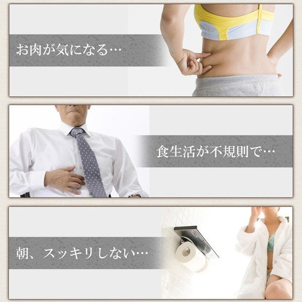 屋久島紫ウコン(ガジュツ)粉末(100g) / 無農薬 / 有機栽培 / 産地直送 yakushimashop 06
