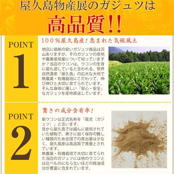 屋久島紫ウコン(ガジュツ)粉末(100g) / 無農薬 / 有機栽培 / 産地直送 yakushimashop 09