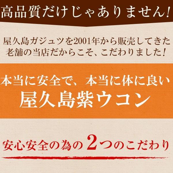 屋久島紫ウコン(ガジュツ)粉末(100g) / 無農薬 / 有機栽培 / 産地直送 yakushimashop 10