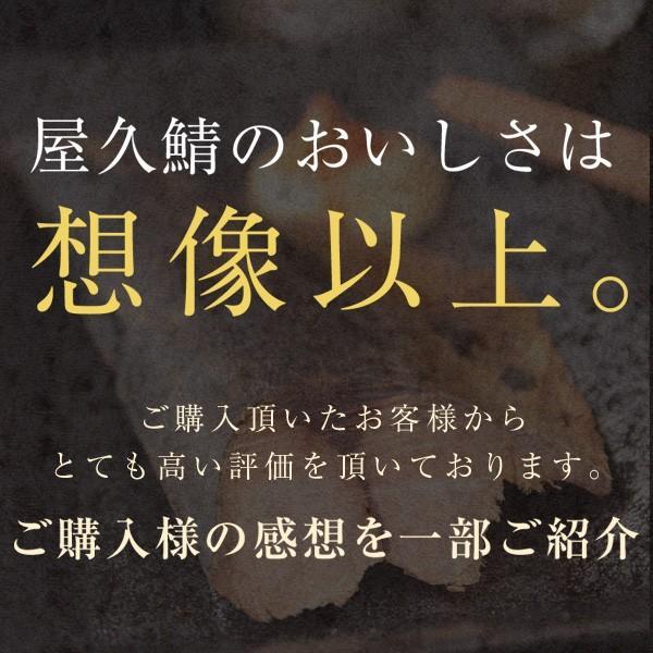 鯖 なまり節 屋久島名産ごまさばぶし1本入 6パックセット|yakushimashop|03