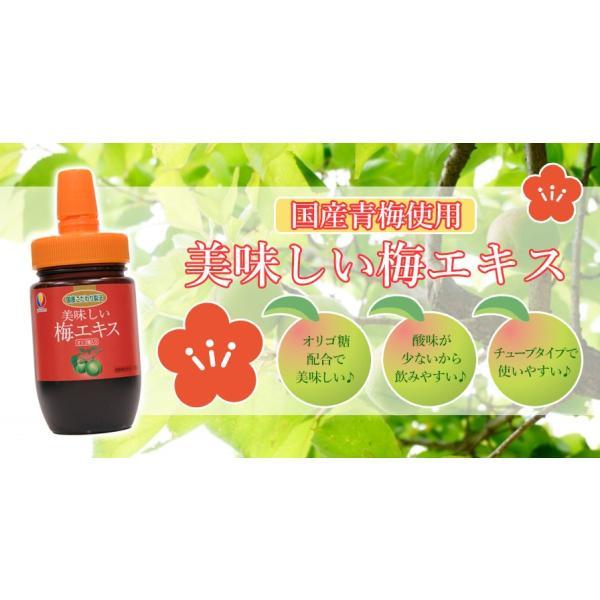 美味しい梅エキス・オリゴ糖入り(130g)|yakuzen