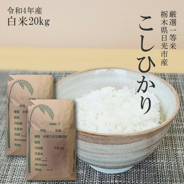新米 20kg  送料無料 コシヒカリ 10kg×2袋 令和3年産 栃木県産 白米 一等米 14時までのご注文で当日出荷 お米 20キロ