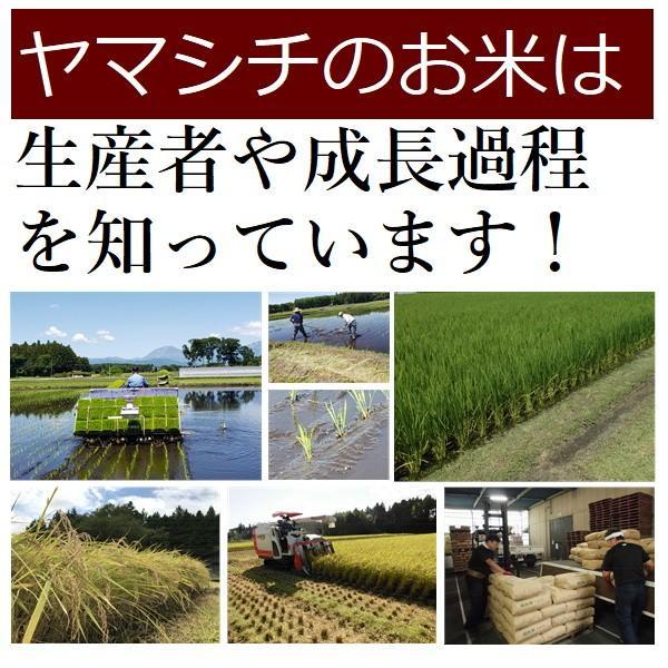 新米 お米 24kg 栃木県 日光産 玄米 一等米 コシヒカリ 平成30年産 送料無料 14時までのご注文で当日出荷|yama-kome|05