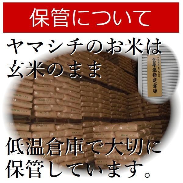 お米 24kg 栃木県 日光産 玄米 一等米 コシヒカリ 平成29年産 送料無料 yama-kome 06