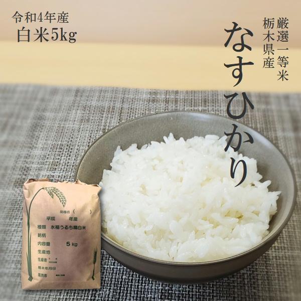 お米 5kg 栃木県 白米 一等米 なすひかり 平成29年産 送料無料 特価 緊急値下げ|yama-kome