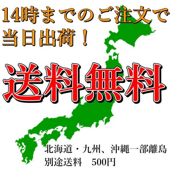 お米 5kg 栃木県 白米 一等米 なすひかり 平成29年産 送料無料 特価 緊急値下げ|yama-kome|05