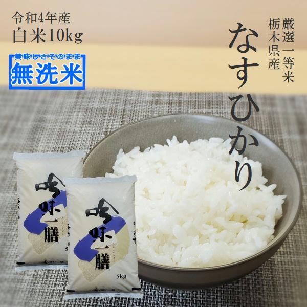 新米 10kg 無洗米 送料無料 なすひかり 5Kg×2袋 令和3年産 栃木県 白米 一等米 精米 平日14時までのご注文で当日出荷 お米 10キロ