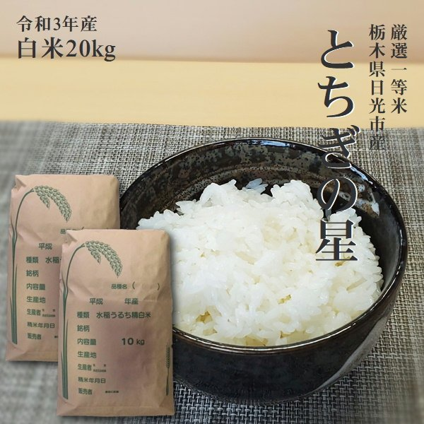 米 20kg 送料無料 とちぎの星 令和2年産 栃木県 日光産 白米 一等米 14時までのご注文で当日出荷 お米 20キロ