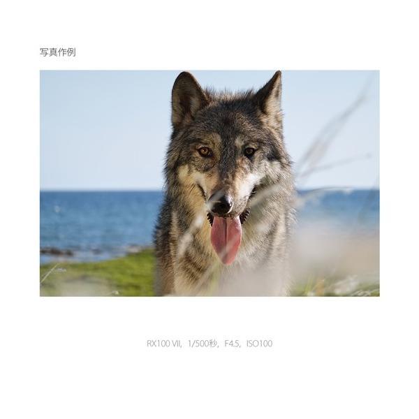 ソニー DSC-RX100M7G コンパクトデジタルカメラ サイバーショット|yamada-denki|06