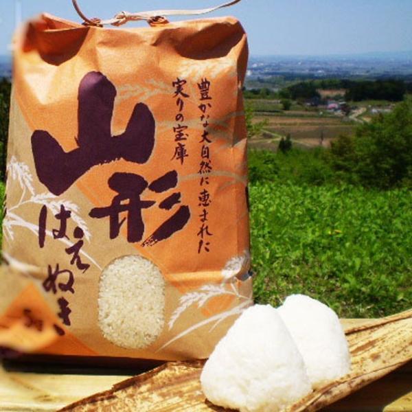 山形県産 お米 10kg  はえぬき 送料無料 お米 10キロ お取り寄せ 山形米 庄内米 ブランド米 お米 ごはん おにぎり 美味しい おいしい
