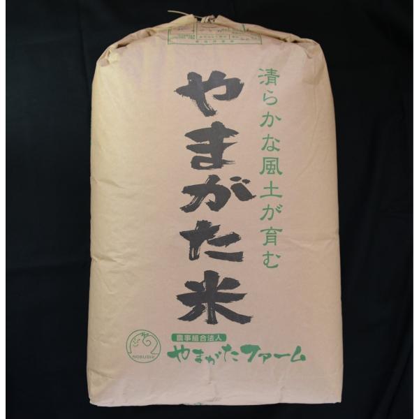 2020年山形県産はえぬき 玄米30kg (一等米)