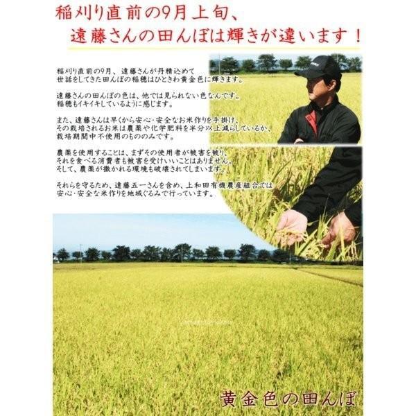 こめ 令和元年産 山形県産 遠藤五一 つや姫 特別栽培米 白米 5kg (農薬7割減) 米 送料込 yamagata-kikou 05