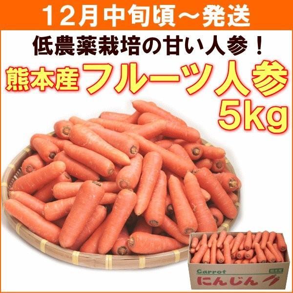 にんじん 人参 12月中旬頃から発送 熊本県産 フルーツ人参 5kg 送料込